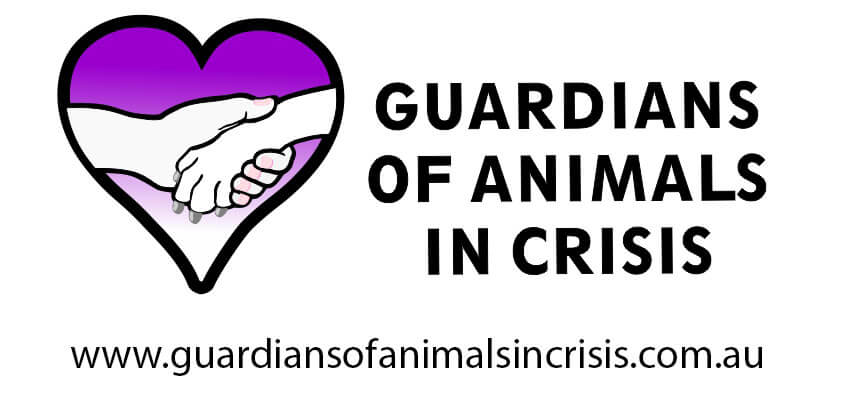 Above & Beyond Dog Rehabilitation Gaurdians Of Animals In Crisis Logo