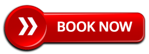 Above & Beyond Dog Training & Rehabilitation Book Now Button