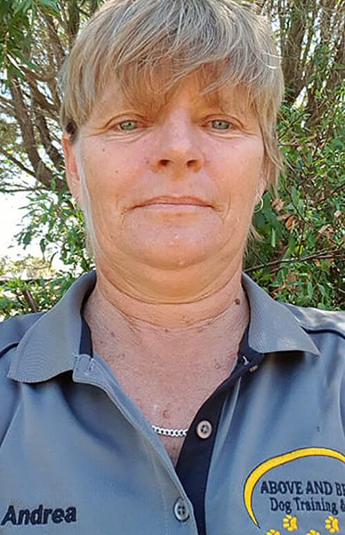 Above & Beyond Dog Training & Rehabilitation Andrea Ahrendt Dog Trainer Brisbane Tarampa